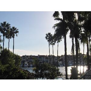 Condo for Rent in Huntington Beach