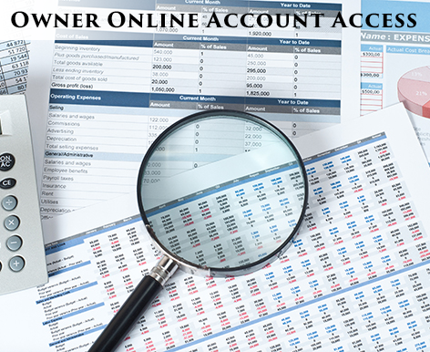 Owner online account access